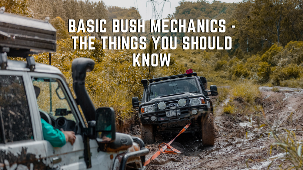 Basic Bush Mechanics - The Things You Should Know